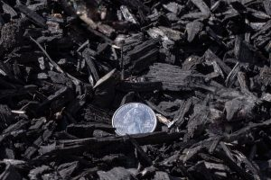 Black Colored Chips with 25 cent quarter for relative size comparison (close-up shot). Superior Soil Supplements logo at the bottom right.