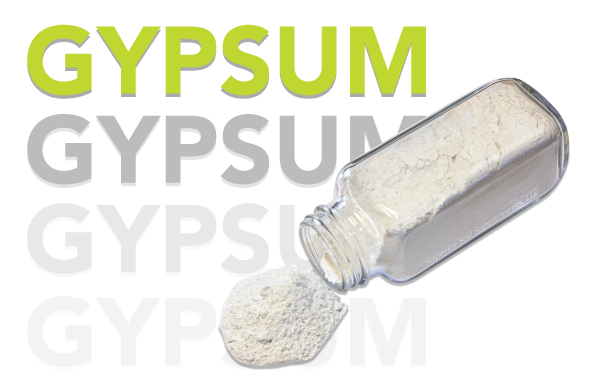 Gypsum with Jar