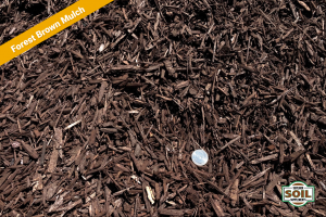 Forest Brown Mulch (Special Orders Only)
